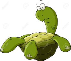 13233966-Cartoon-turtle-on-the-back-vector-illustration-Stock-Vector-animal